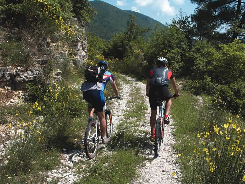 Noleggio-biciclette